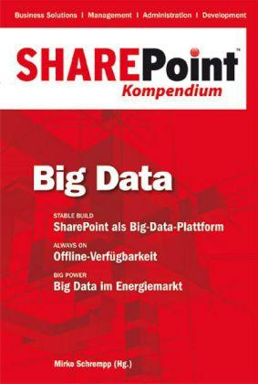 sharepoint_kompendium_bd_4_big_data